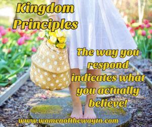 kingdomprinciples